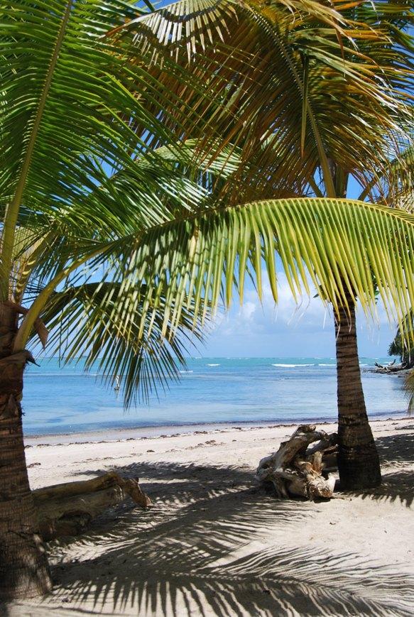 Reisetipps für Aruba, Bonaire & Curacao. Reisetipps abc Inseln